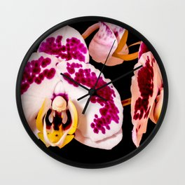Moth Orchid Wall Clock