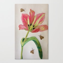A Tulip for you ! Canvas Print