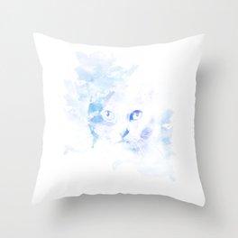 Mystery Cat Throw Pillow
