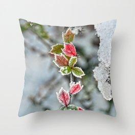 Red & Green  Throw Pillow