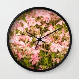 Shiba-zakura Flowers Wall Clock