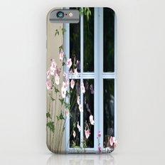 Window Dressing iPhone 6s Slim Case