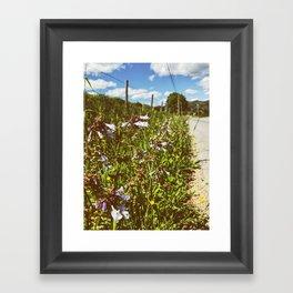 Roadside Flowers • Appalachian Trail Framed Art Print