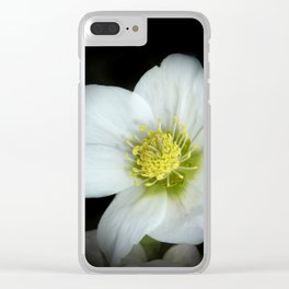 Christmas rose on black Clear iPhone Case