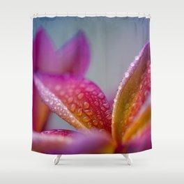 Pua Melia ke Aloha Hawaii Shower Curtain