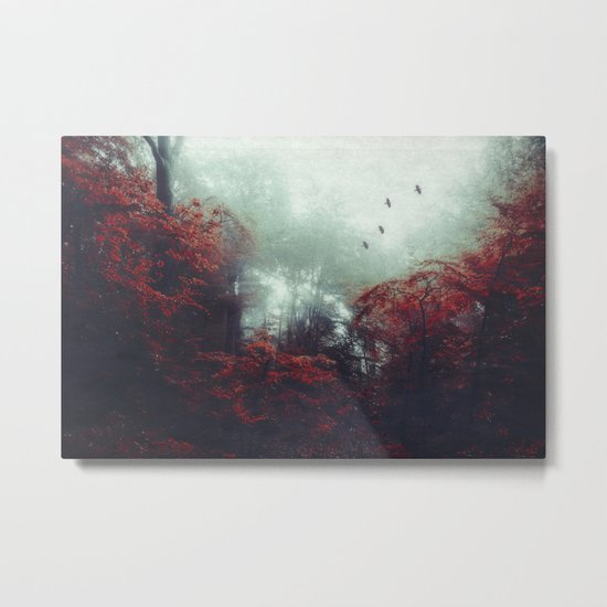 Barrier - enchanted forest Metal Print