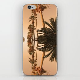 Palms1 iPhone Skin