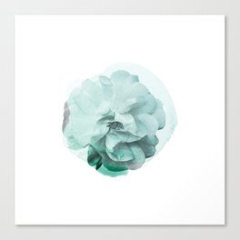 Green Rose Watercolor Canvas Print