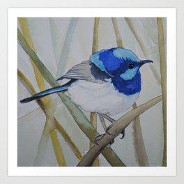 Blue Bird (Sold - original) Art Print