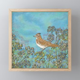 Summer Skylark Framed Mini Art Print
