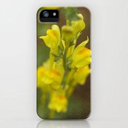 Montana  Wildflower iPhone Case