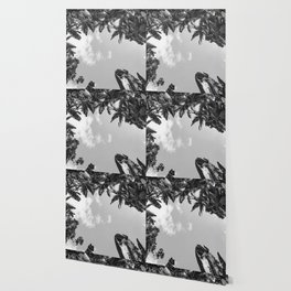 Rainforest Canopy - Tropical Sky Black and White Wallpaper