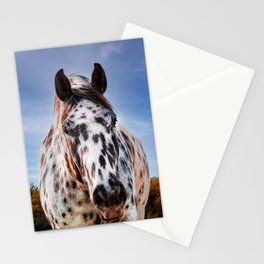 Ole Paint Stationery Cards