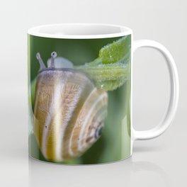 Snail on green Coffee Mug