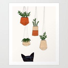 Studying the Hanging Plants Art Print