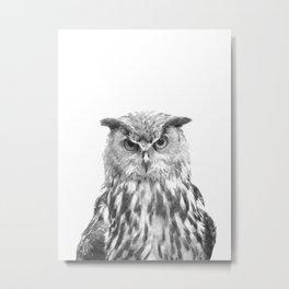 Black and white owl animal portrait Metal Print