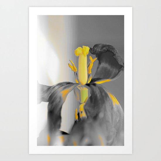 #173 Art Print
