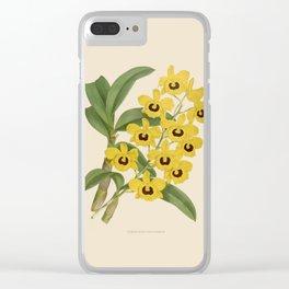 Dendrobium Suavissimum Clear iPhone Case