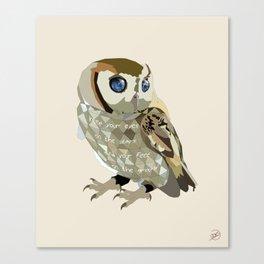 Blind Owl Canvas Print