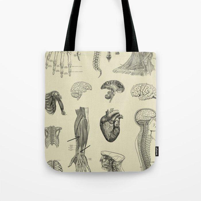 Vintage Anatomy Print Tote Bag By