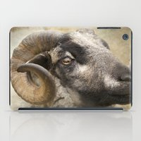 ram iPad Cases featuring Ram by Pauline Fowler ( Polly470 )