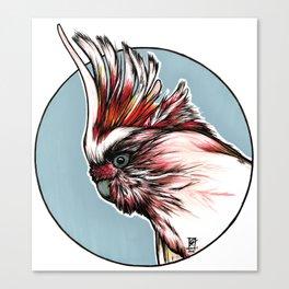 Major Mitchell´s Cockatoo Canvas Print
