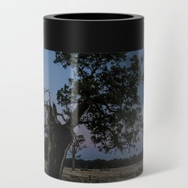 The Moody Tree. Can Cooler
