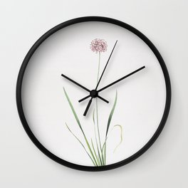 Vintage Mouse Garlic Illustration Wall Clock