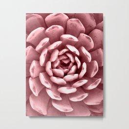 Watercolor Succulent Pink Metal Print