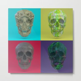 Skull Collection 03 Metal Print