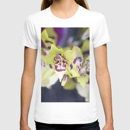 Longwood Gardens Orchid Extravaganza 74 T-shirt