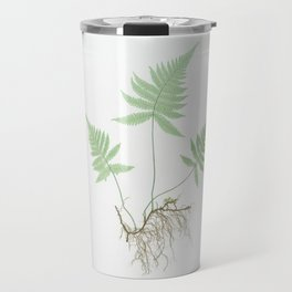 Botanical Beech Fern Travel Mug