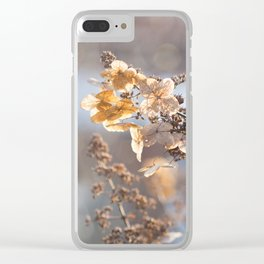 Sunlight through Dried Flowers Clear iPhone Case