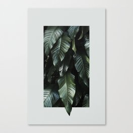 Growth II Canvas Print