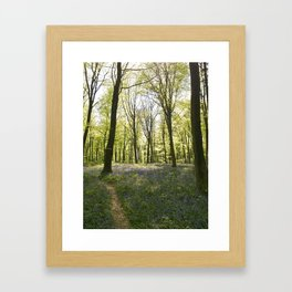Deep in Micheldever Wood Framed Art Print