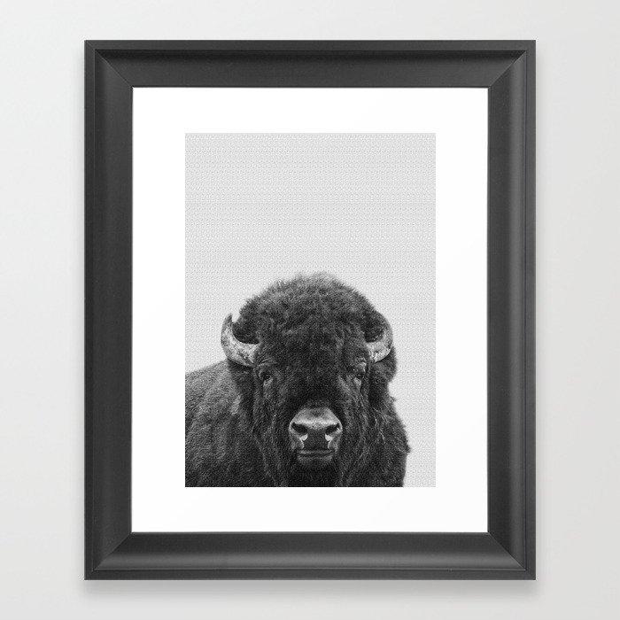 Buffalo Print, Bison Wall Art, Photography Print Framed Art Print