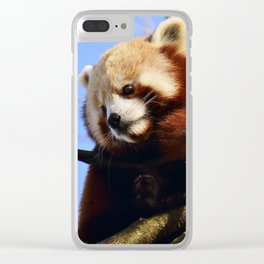Red Panda In A Tree Clear iPhone Case