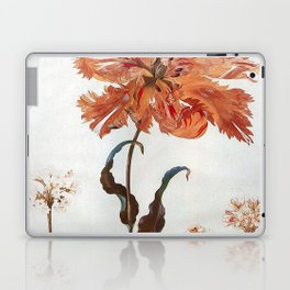 A Parrot Tulip Auriculas & Red Currants with a Magpie Moth Caterpillar Pupa by Maria Sibylla Merian Laptop & iPad Skin