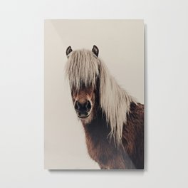 Hi, I'm a Scottish Horse Metal Print