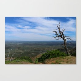 Till the End of My Days Canvas Print