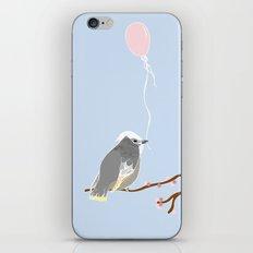 The birthday bird iPhone & iPod Skin