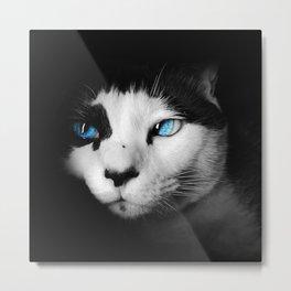Feline darkness Metal Print