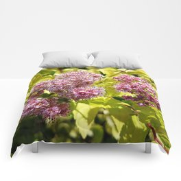 Lilac flowers Comforters