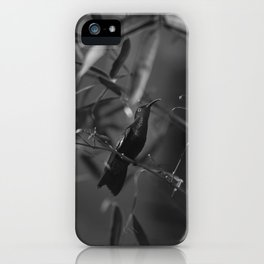 Colibri iPhone Case