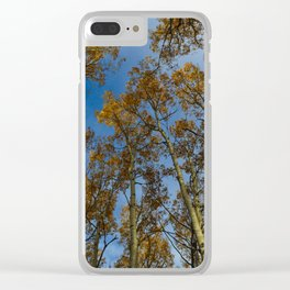 Trembling Aspen Trees in Jasper National Park Clear iPhone Case