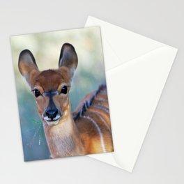 Nyala deer photo Stationery Cards