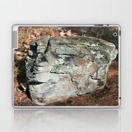 Stone Head Laptop & iPad Skin