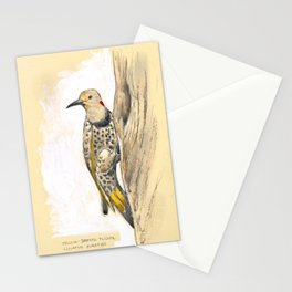 Yellow-shafted Flicker Stationery Cards
