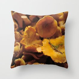 Chantarelle mushrooms. Throw Pillow