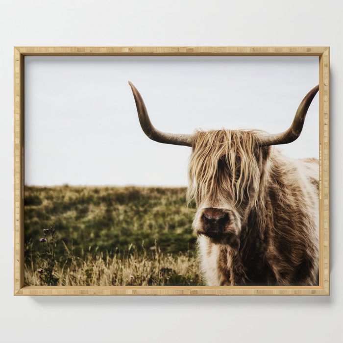 Highland Cow - color Serving Tray
